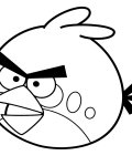 Angry birds Free Online Coloring Pages