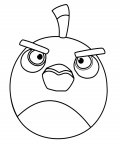Angry birds Online Coloring Pages for boys