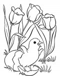 Birds Coloring Page for your Little Ones