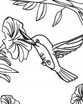 Birds Coloring Pages for boys