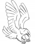 Birds Free coloring pages for boys