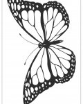 Butterflies Free Online Coloring Pages