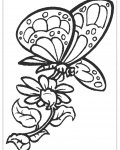 Butterflies Download coloring pages