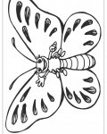 Butterflies Download and print coloring pages for kids