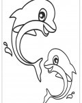 Dolphins Free printable coloring pages
