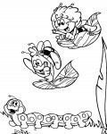 Maya the Bee Coloring Pages for boys