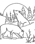 Wolves Coloring page template printing